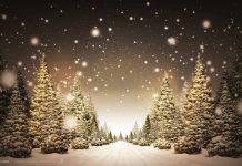 Christmas Radio Show Beste Wilma