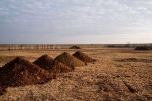 Tekstschrijver-Wilma Vervoort-Content Schrijven-1.5 miljoen graven in Zuid-Afrika