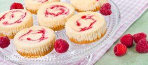 WIlma Vervoort-Tekstschrijver-Content Schrijven-Mini cheesecakes